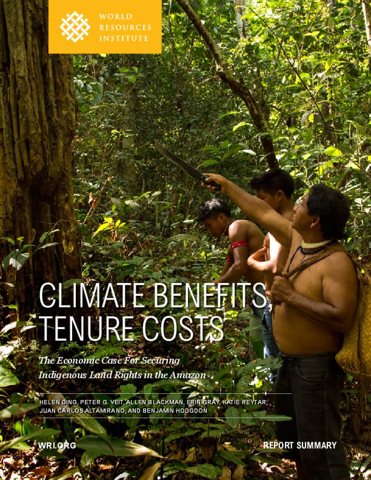 Climate Benefits Tenure Costs: The Economic Case for Securing Indigenous Land Rights in the Amazon, Executive Summary