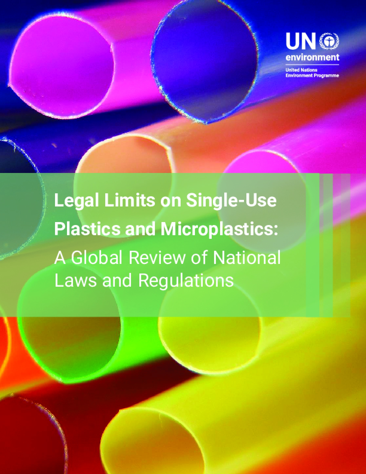 Legal Limits on Single-Use Plastics and Microplastics: A Global Review of National Laws and Regulations