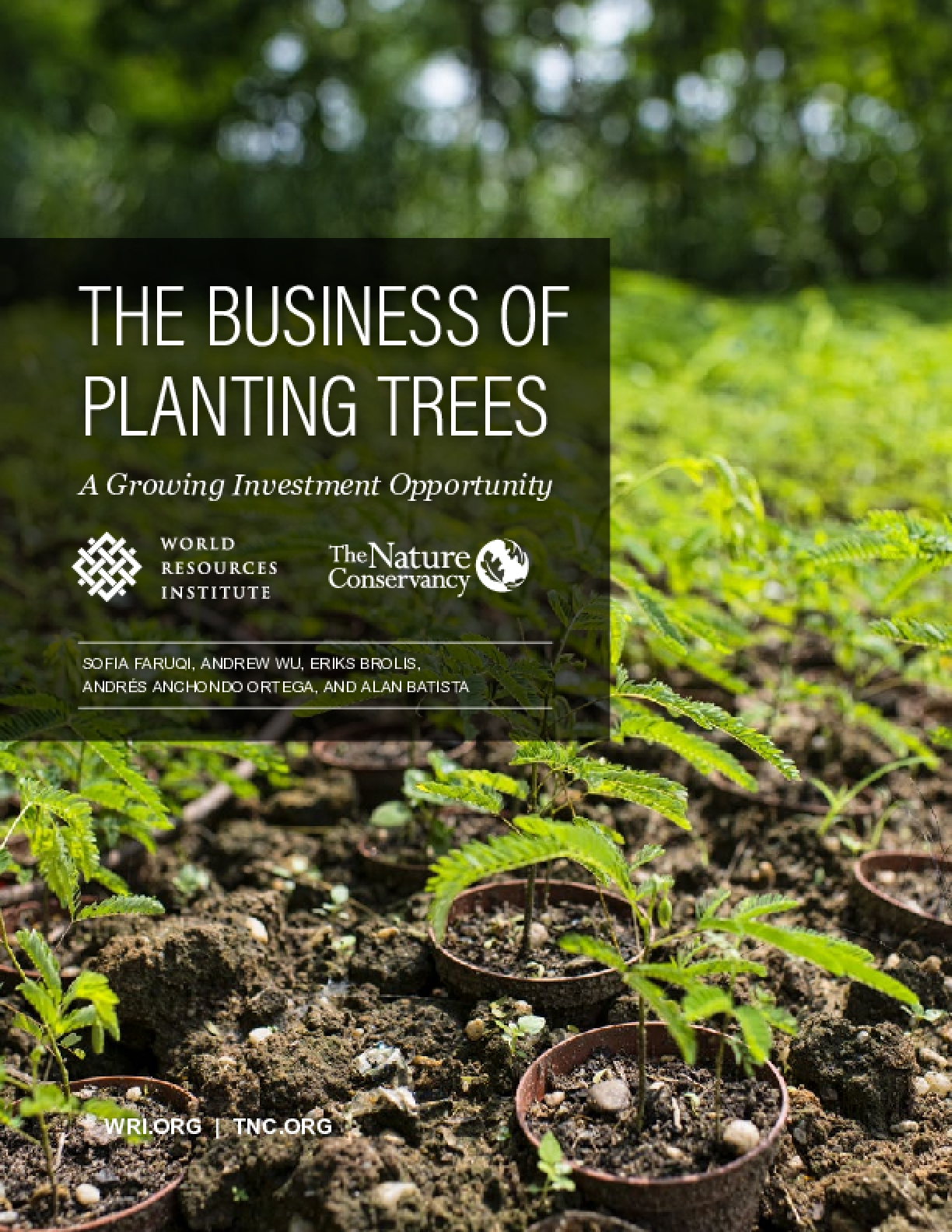 The Business of Planting Trees: A Growing Investment Opportunity