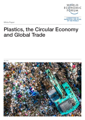 Plastics, the Circular Economy and Global Trade